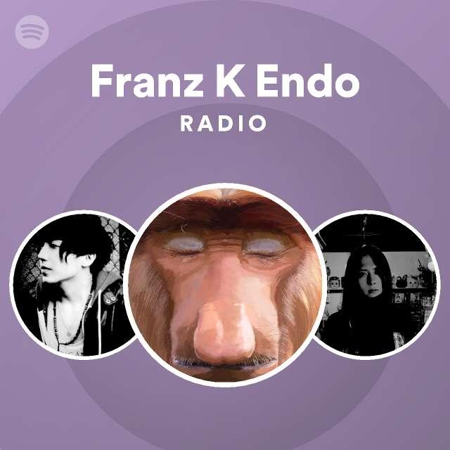 Endo franz k the perfect